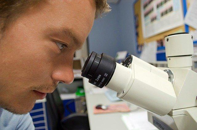 výzkum pod mikroskopem