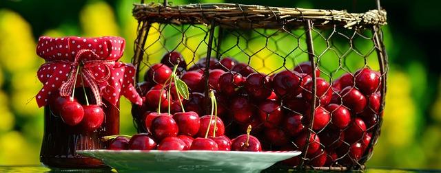cherry sklizeň.jpg